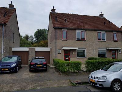 Zenegroen, Leeuwarden