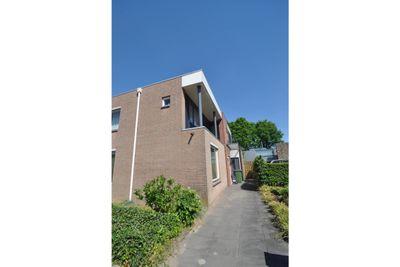 Wildeman, Eindhoven