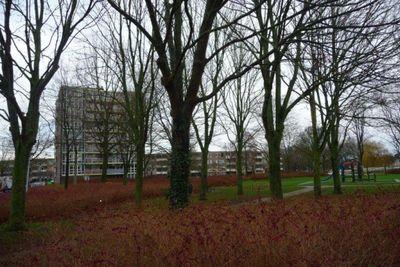 Messiaenplantsoen, Almere