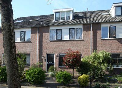 Hoornblad 79, Hardenberg