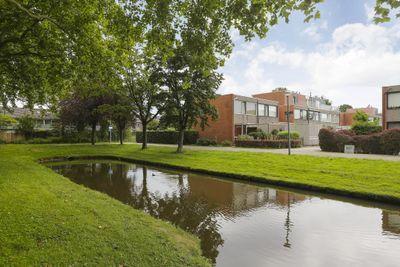 Andoorn 37, Rotterdam