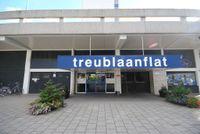 Treublaan, 'S-Gravenhage