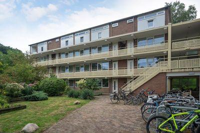 Europalaan, Enschede
