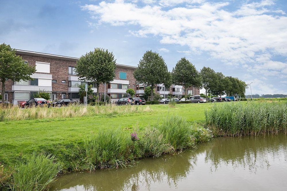 Watervogelstraat 81, Den Haag