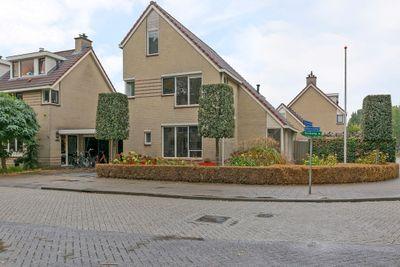 Meercamp, Houten