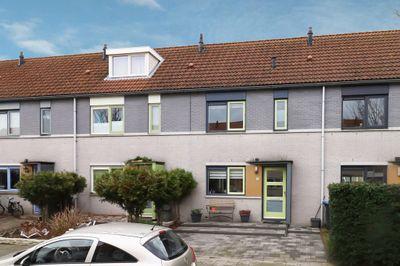 Wintertaling 33, Bergen Op Zoom