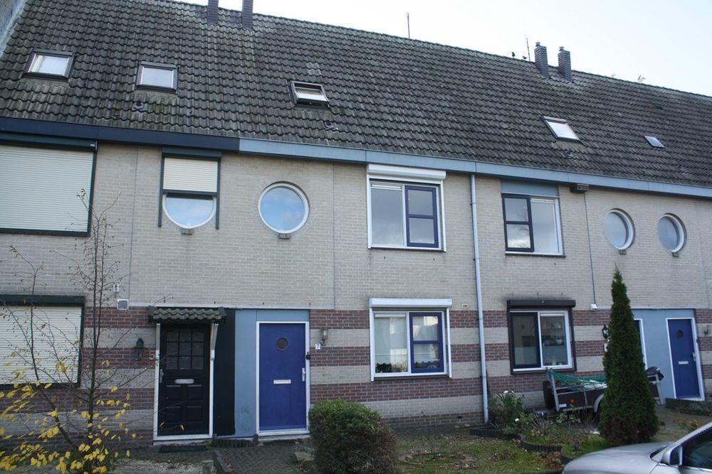 Speelman 7, Bergen Op Zoom