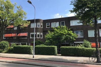 Petrus Campersingel, Groningen