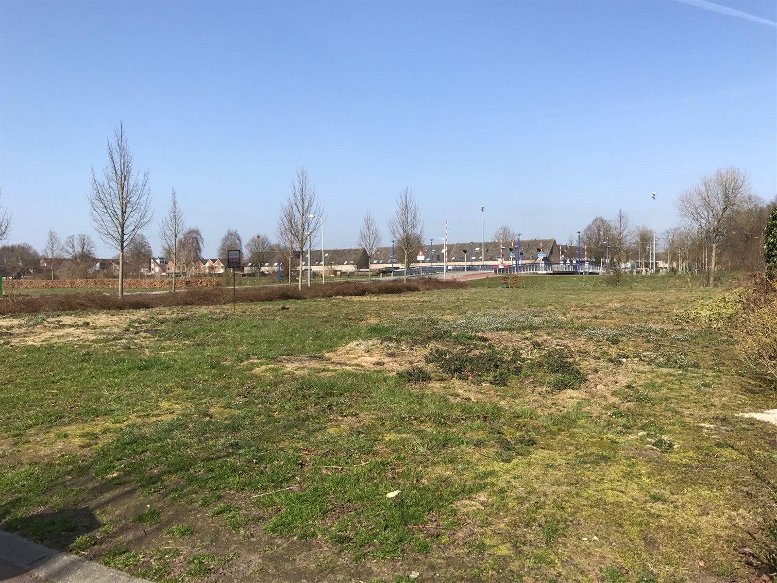Damhert 0ong, Hoogeveen