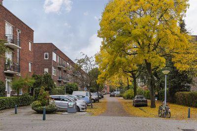 Van Beuningenstraat 3-01, Rotterdam