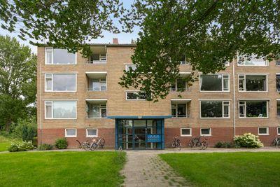 Dierenriemstraat 77, Groningen