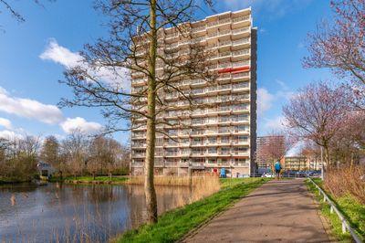 Octant 33, Dordrecht