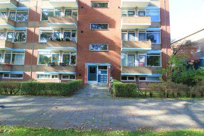 Van Lenneplaan, Groningen