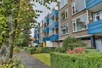 Vondellaan 68, Groningen