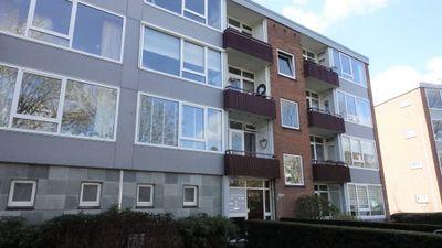 Moeflonstraat, Apeldoorn