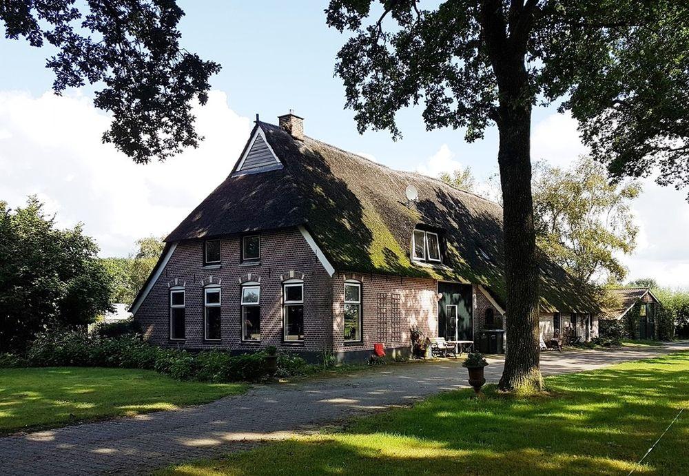 Den Hool 5, Holsloot