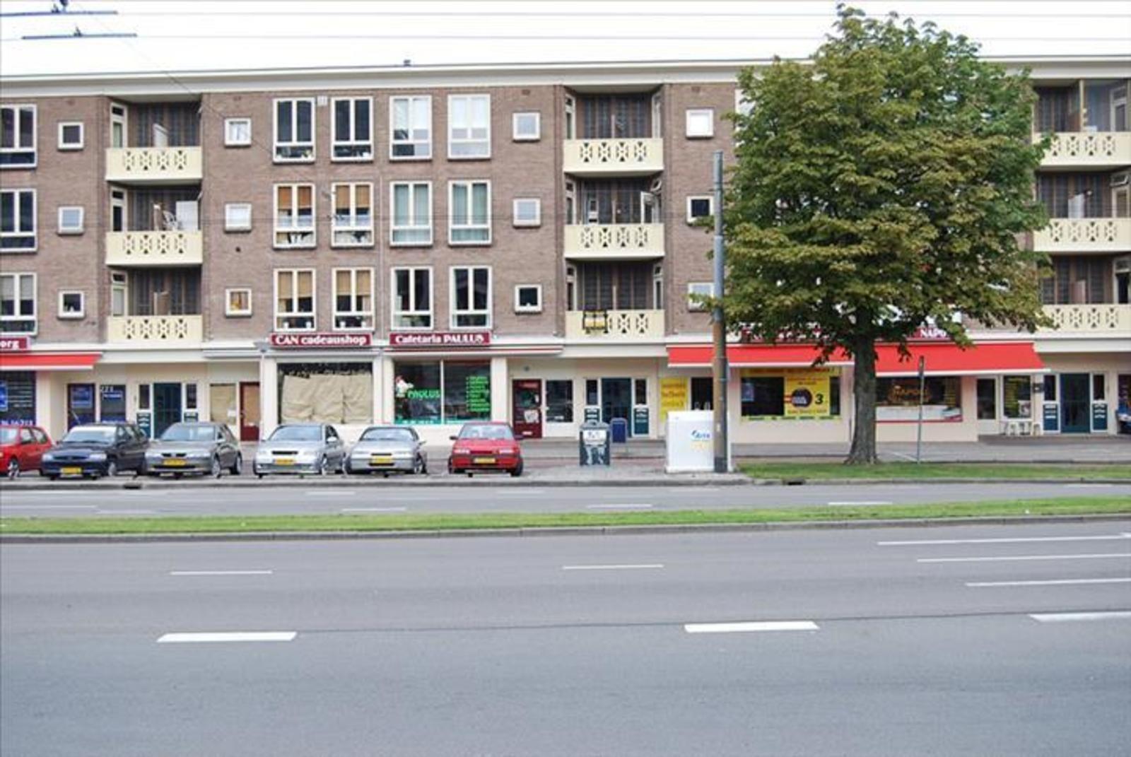 Johan de Wittlaan 275-3, Arnhem