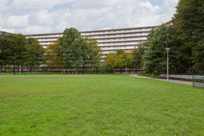 Kikkenstein 3834, Amsterdam