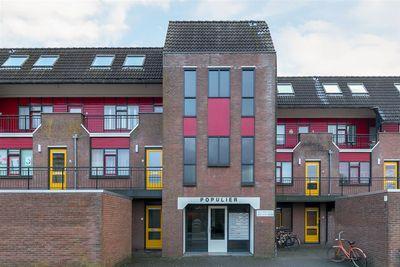 Populier 203, Heerenveen
