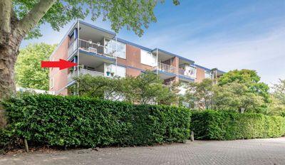 Bellevuestraat, Dordrecht