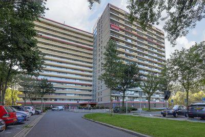 Oost-Dorsch 97, Zaandam