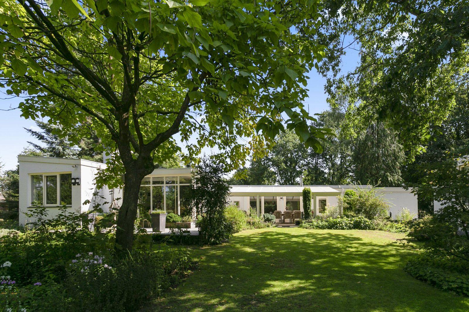 Bosrand 6, Lieshout