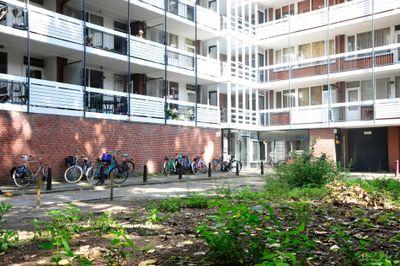 Frederikstraat 439, 's-Gravenhage