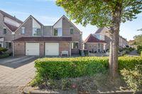 Cypres 9, Hoorn