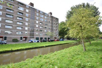 Cornelis Bloemaertsingel, Rotterdam