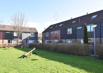 Horst 25 56, Lelystad