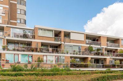 Essenburg 82, Dordrecht