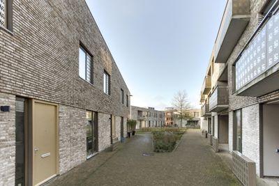Courtine 2, Groningen