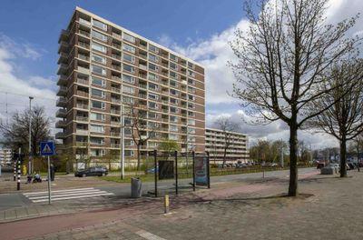 Wilgenplaslaan 276, Rotterdam