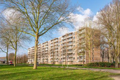 Edmond Hellenraadstraat, Rotterdam