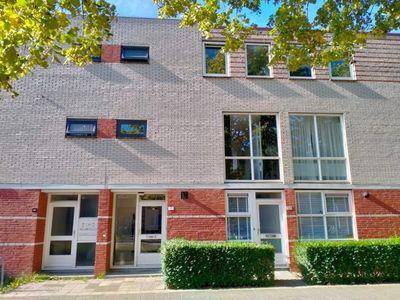 S.O.J. Palmelaan, Groningen
