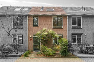 Masayalaan 32, Nijmegen