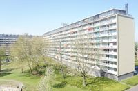 Bachplein 495, Schiedam