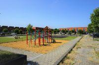 Zuidewijn, Lelystad