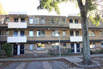 Sterappelgaard 154, Arnhem