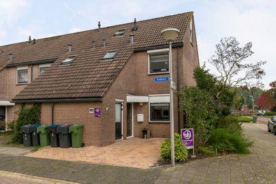 Andoorn 64, Kampen