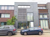 Minervalaan, Leiden