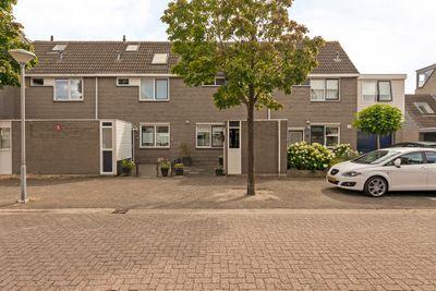 Waterkers 8, Kampen
