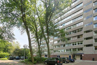 Aart van der Leeuwlaan 1010, Delft