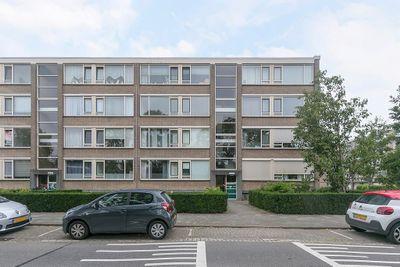 Bredenoord 113, Rotterdam