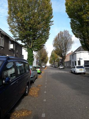 Vredeman de Vriesstraat 75, Tilburg