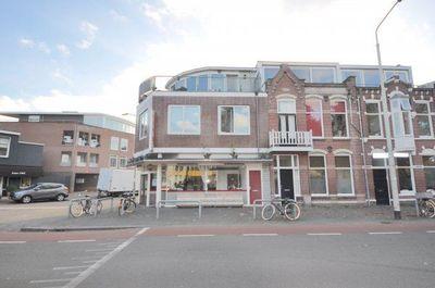 Wilhelminapark, Breda