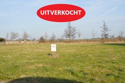 Papenmuts UITVERKOCHT 0-ong, Ijzendijke