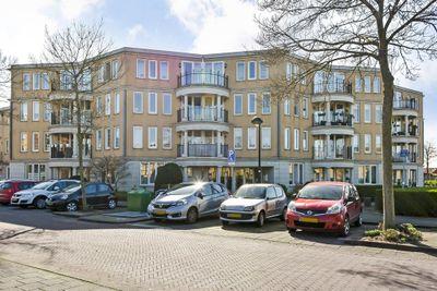 Lange Dreef, Rijswijk