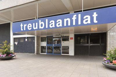 Treublaan, Den Haag