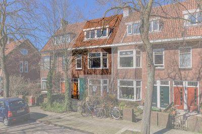 Tomatenstraat, Leiden